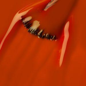 Długotrwały lakier do paznokci ProNails LongWear 224 Turmeric Turmoil.
