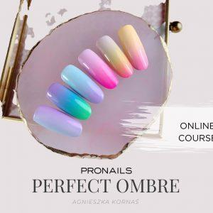 Online Course ProNails The secrets of perfect Ombre Nails ProNails Polska