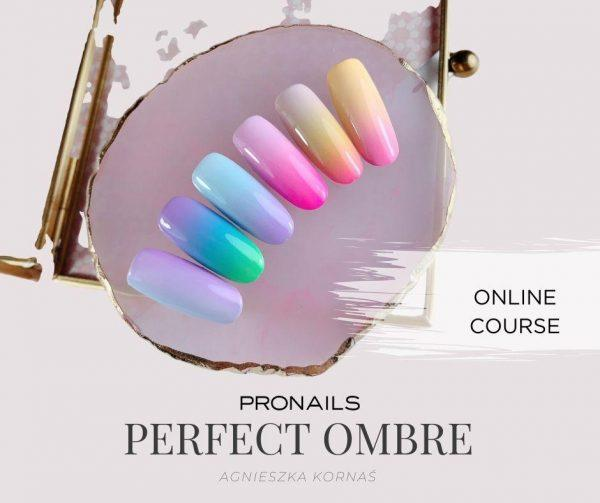 Online Course ProNails The secrets of perfect Ombre Nails ProNails Polska